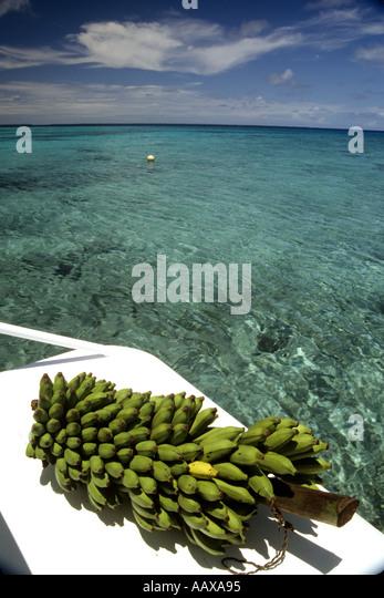 fresh green bananas on dive boat over tropical sea - Stock Image