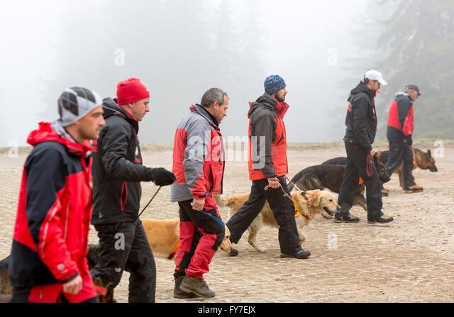 Bulgarian Dog Rescue Uk