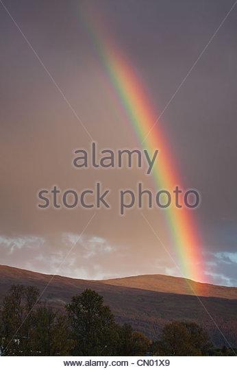 Rainbow - Stock-Bilder