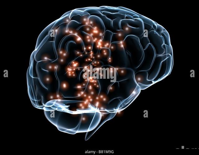 active brain - Stock-Bilder