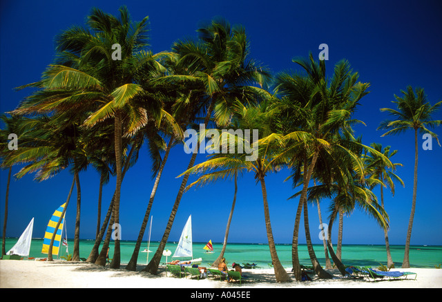 Dominican Republic,Bavaro Beach, Punta Cana palm trees white sand and Caribbean Sea - Stock Image