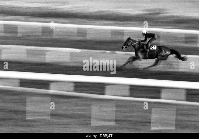 Horse racing at Mahalaxmi race course, Mumbai, Maharashtra, India, 1985 - Stock Image