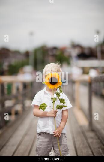 Germany, Bayern, Boy (4-5) holding sunflower - Stock Image