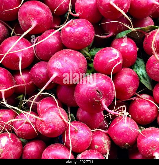 Red radishes. - Stock Image