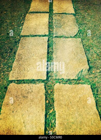 Rectangular stone steps with grass. - Stock Image
