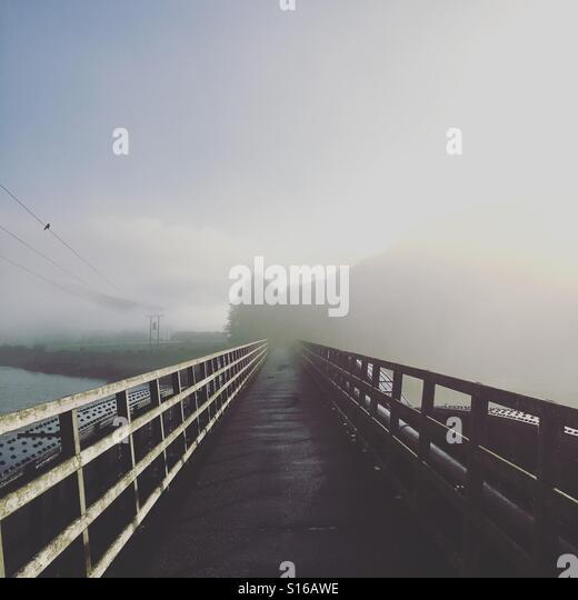 Mist clears I've a bridge on an autumnal morning in the Scottish Borders - Stock-Bilder