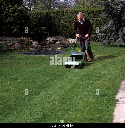 Natural garden pond hedge stock photos natural garden for Garden pond electrics