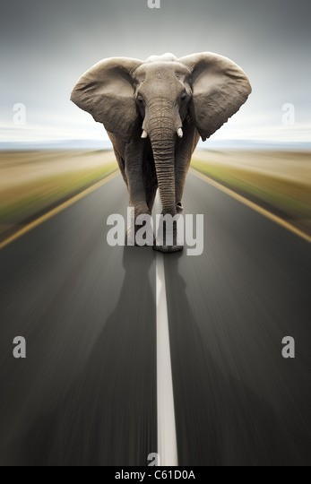 Conceptual - Heavy duty transport / travel by road (Digital composite) - Stock-Bilder