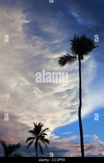 Dominican Republic, Punta Cana Region, Bavaro - Stock-Bilder