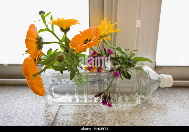 Fresh cut flowers with water bottle - Stock Image
