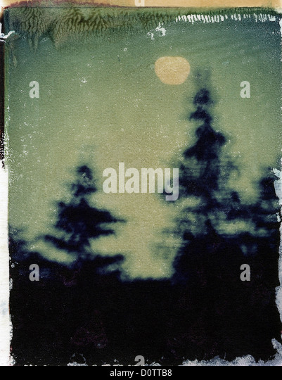 Night sky with trees and moon, polaroid transfer, ©mak - Stock Image