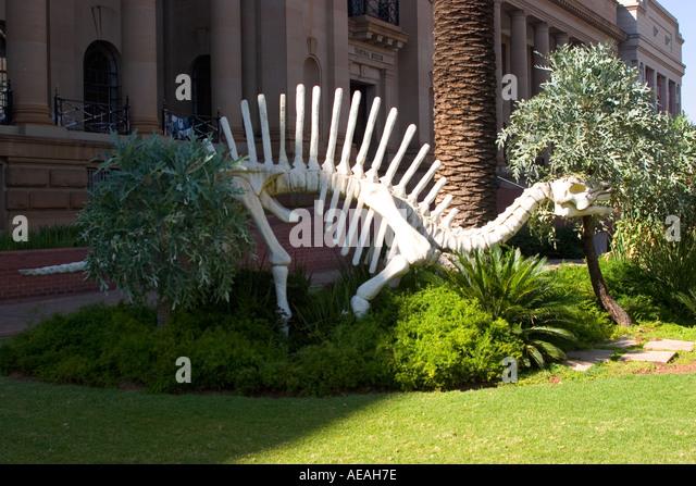 Pretoria Transvaal Museum - Stock Image