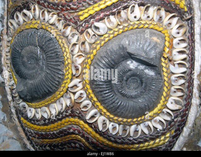 Ammonite fossils incorporated into traditional old West Papuan mask, West Papua, Indonesia - Stock Image