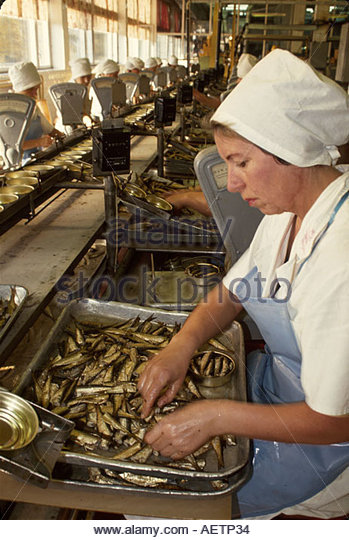 Estonia Tallin Esmar Sardine Corporation processing plant employment jobs natural resources - Stock Image