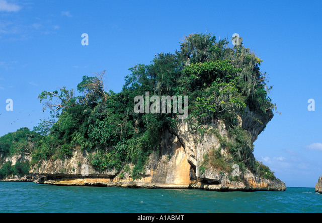 Dominican Republic Samana Peninsula Los Haitises National Park bird rookery - Stock Image