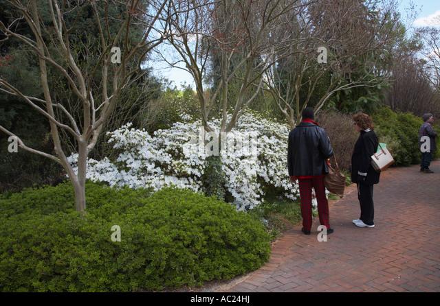 Photograph Botanical Garden Stock Photos Photograph Botanical Garden Stock Images Alamy