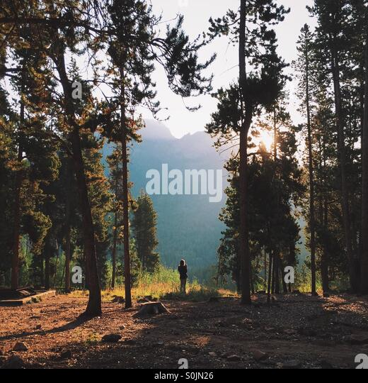 Campsite Morning - Stock Image