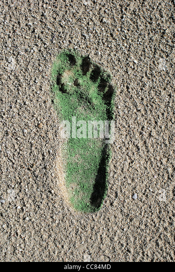 Green Carbon Footprint in Coral Beach Sand - Stock Image