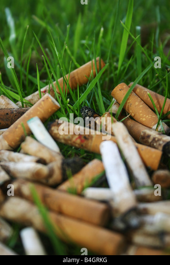Cigarette ends in grass - Stock Image
