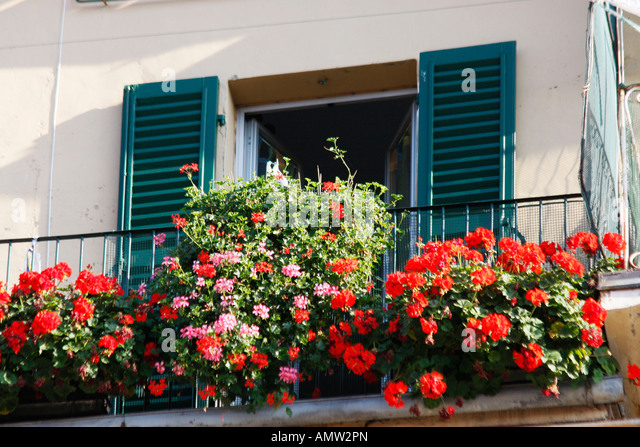Flowers decorate a balcony of a house built within the medieval city wall of Jesi.Le Marche ,Italy - Stock Image