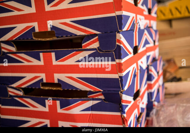 Vegetable boxes in the market in the University city of Cambridge in England - Stock-Bilder