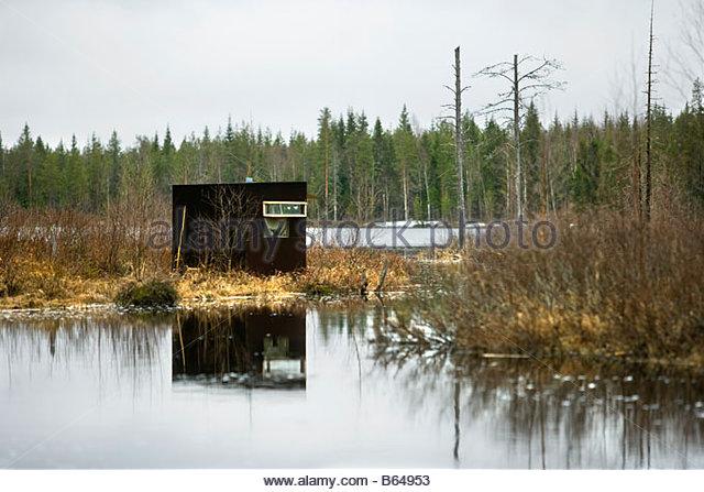 Finland, Kuikka Lake, near Kuhmo. Ultima taiga. Centre for tourism and wildlife watching and husky trekking. - Stock Image