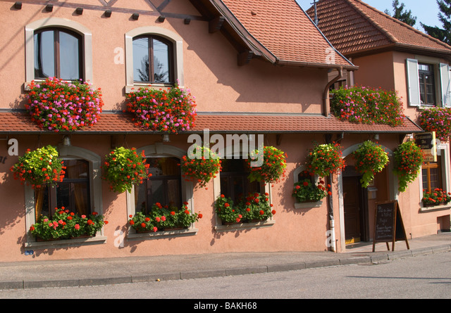 house with flowers dahlenheim alsace france - Stock Image