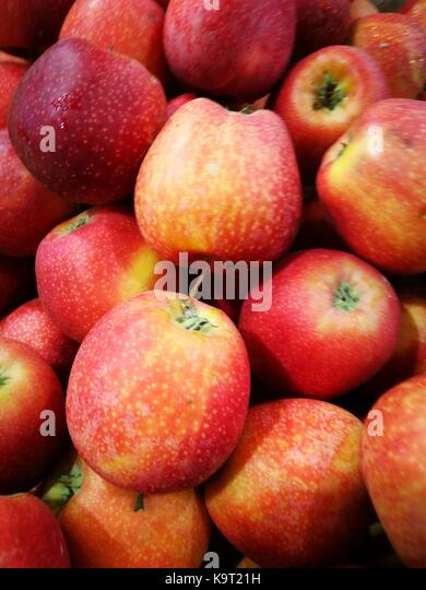 Fresh and natural freshly picked organic apples in bulk fruit display for sale at a local rural farmer market - Stock Image