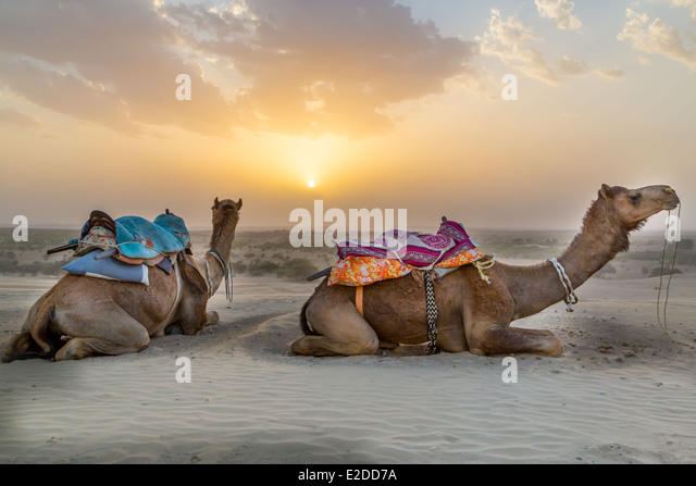 Rajastan Stock Photos & Rajastan Stock Images - Alamy
