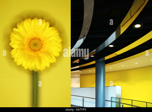 city hall interior london, juxtaposed with yellow flower - Stock-Bilder