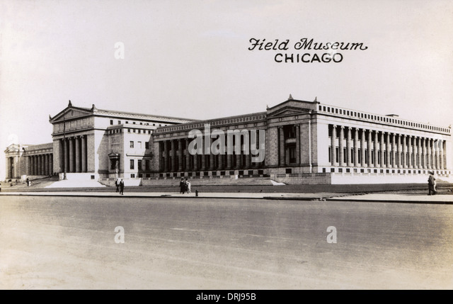 Field Museum of Natural History, Chicago, USA - Stock Image