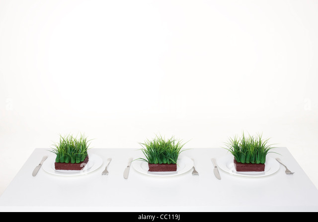 Place settings with servings of grass - Stock Image