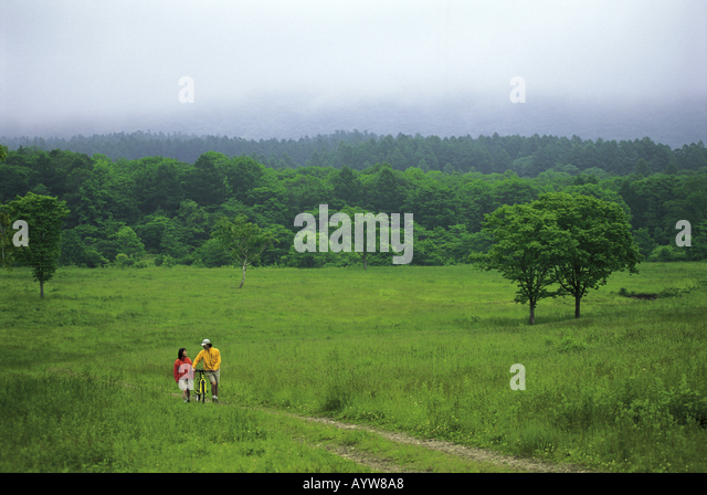 Couple with bicycle walking in the meadow - Stock-Bilder
