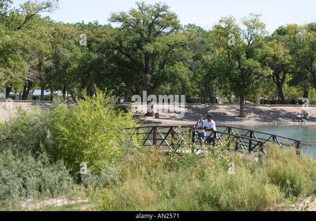 Albuquerque New Mexico Rio Grande Park cottonwood trees - Stock Image