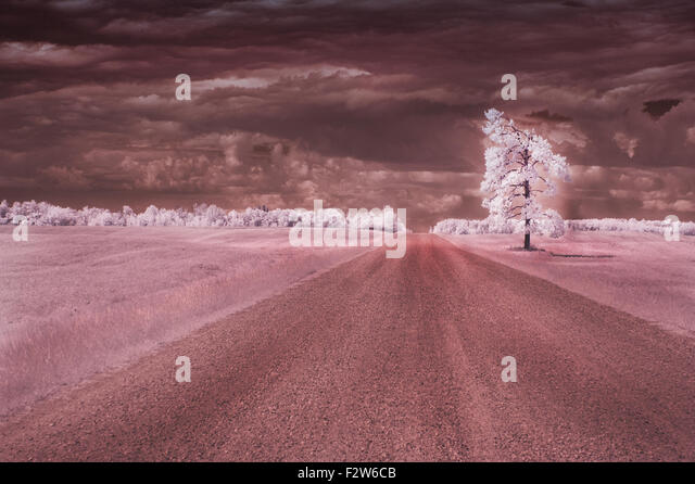 Infrared photo of a lonely road. - Stock Image