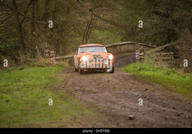 Duncombe Park, North Yorkshire, UK . 09th Nov, 2013. UK RAC Rally Duncombe Park Special Stage 8. Mark Shmidt and - Stock Image