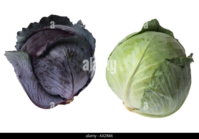 how to cut white cabbage