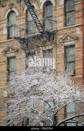 Chelsea Building with fire escape and snow covered tree, winter storm, Manhattan, New York City - Stock Image