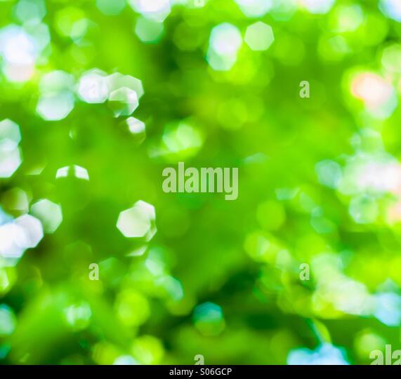 Colorful green bokeh - Stock Image