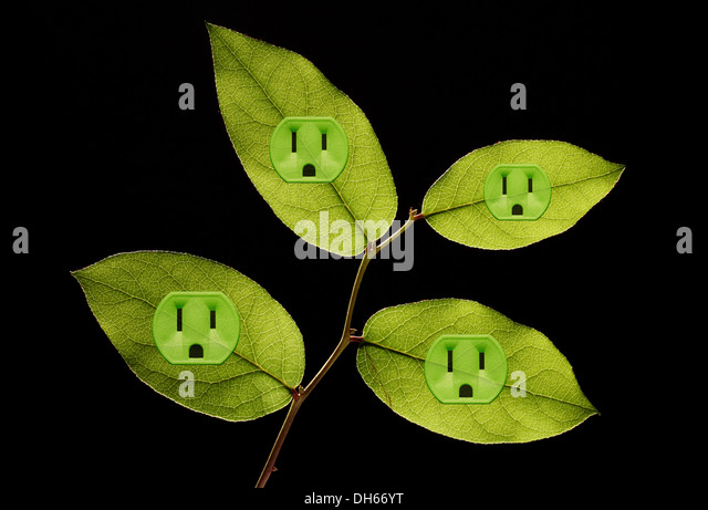 Four green plant leaves with green colored electrical outlets added.Black background - Stock Image
