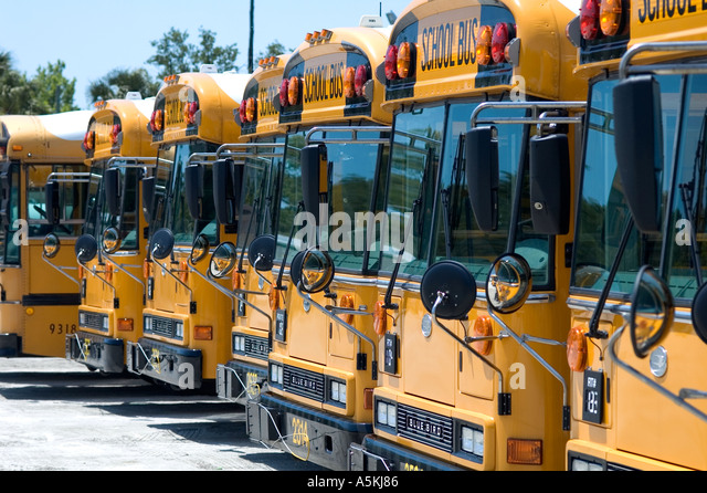 School buses row stock photos school buses row stock for Volusia county motor vehicle