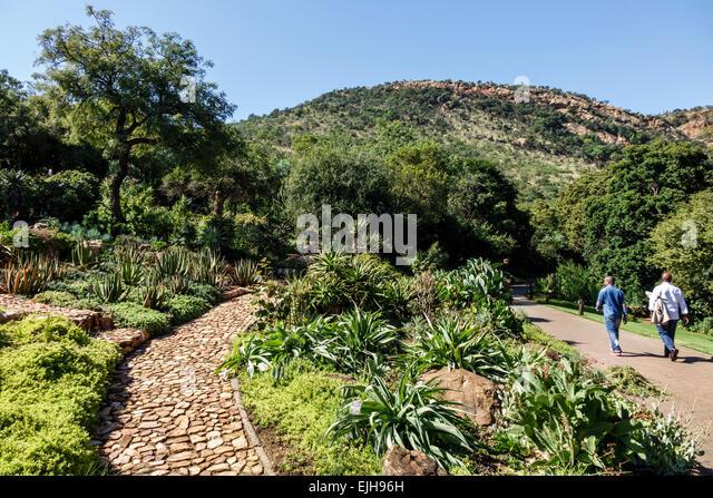 Johannesburg South Africa African Roodepoort Walter Sisulu National Botanical Garden Witwatersrand geologic man - Stock Image