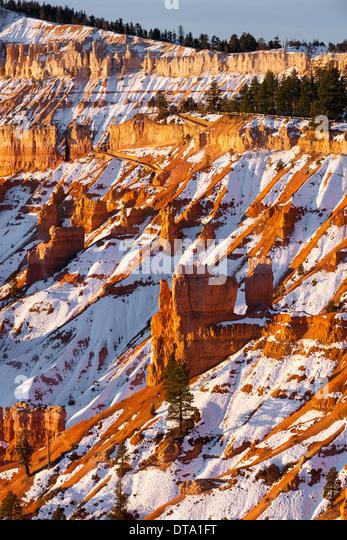 Winter sunrise in Bryce Canyon National Park, Utah - USA - Stock Image