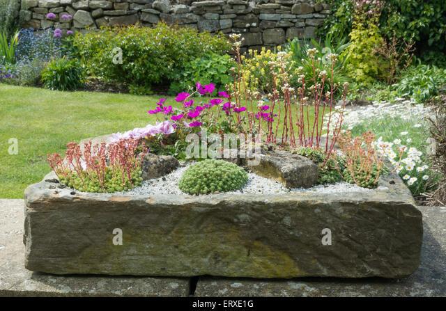 Stone Sink Garden : Sink Garden Stock Photos & Sink Garden Stock Images - Alamy
