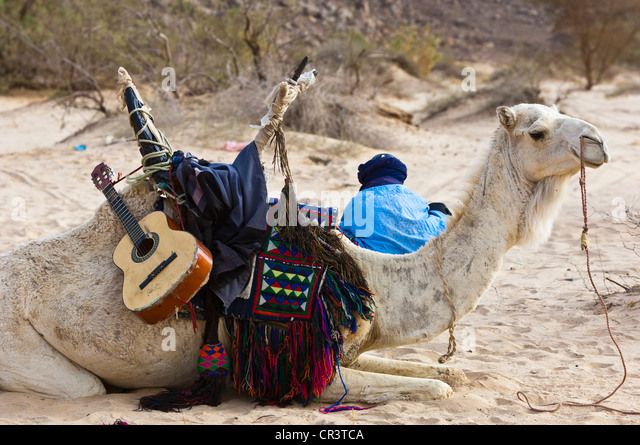 Algeria, Sahara near Djanet, Tassili N'Ajjer Massif, national park UNESCO World Heritage, tuareg man, in the - Stock Image