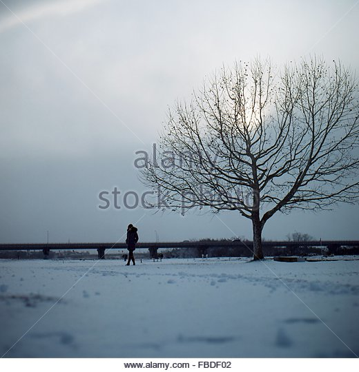 Woman Standing Besides Bare Tree On Snowy Field Against Sky - Stock Image