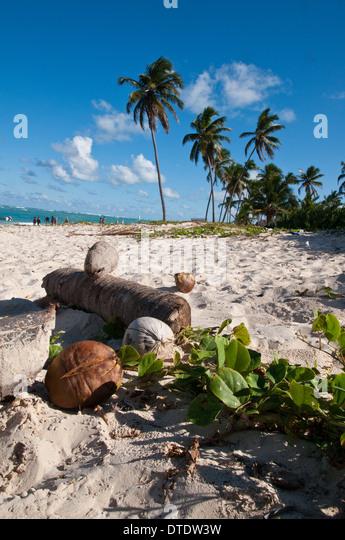 Beach on Punta Cana. Republica Dominicana. - Stock Image