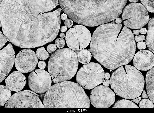 Vintage old grunge wood background. - Stock Image