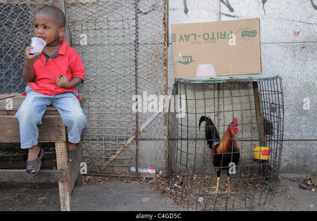 Santo Domingo Dominican Republic Ciudad Colonia Mercado Modela Black market rooster makeshift wire cage animal boy - Stock Image
