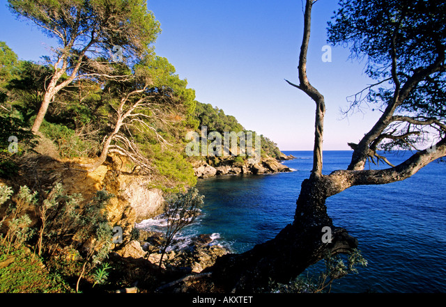 rayol canadel sur mer stock photos rayol canadel sur mer stock images alamy